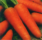 Семена моркови Курода Новая